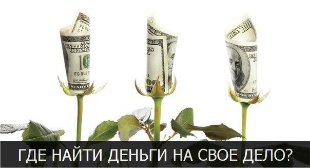 Где найти деньги на свое дело? Государственное и частное финансирова