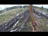 Охотник попытался отбиться от нападения медведя луком и стрелами [Рифмы и Панчи]