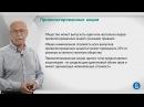 Курс лекций Фондовый рынок Лекция 4 Привилегированные акции