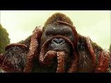 KONG vs GIANT SQUID - Fight Scene - Kong Skull Island (2017) Movie Clip HD