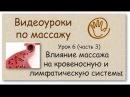 Влияние массажа на кровеносную и лимфатическую систему Урок 6 часть 3 Уроки массажа