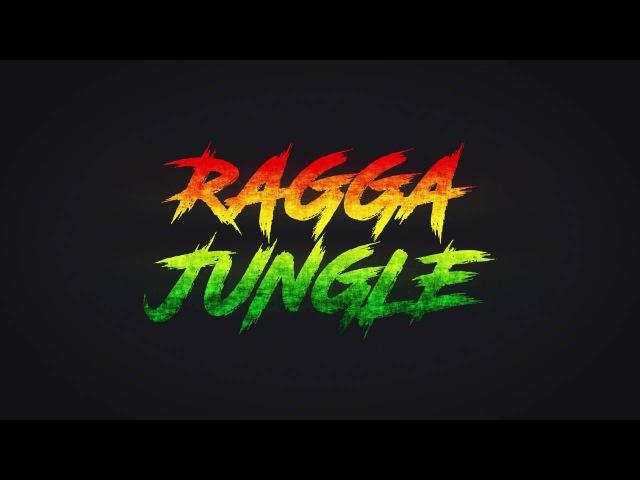 Best of Ragga Jungle Mix - Konga