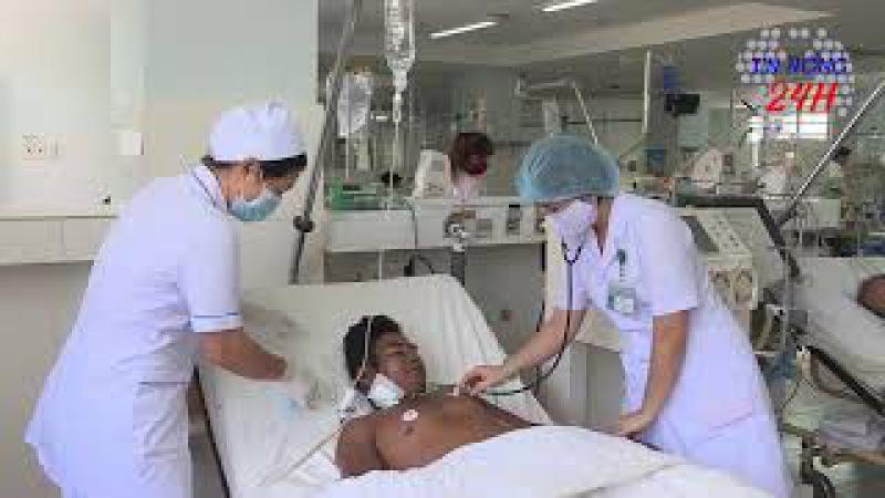 Cứu sống bệnh nhân bị ong vò vẽ đốt hơn 50 mũi