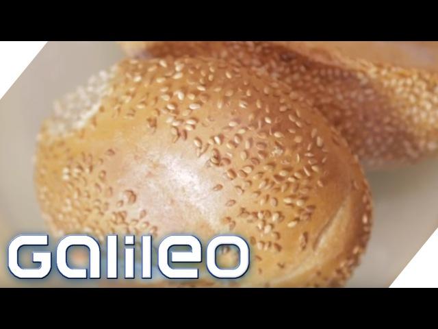 Sesam - Der Weg vom Feld auf das Brötchen   Galileo Lunch Break