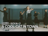 Tape Five - A cool cat in town  Soya-J Waacking Choreography