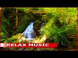 Медленная музыка для души и отдыха. Красивая флейта под звуки природы