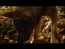 Х/Ф Девочка и волк (1999г)
