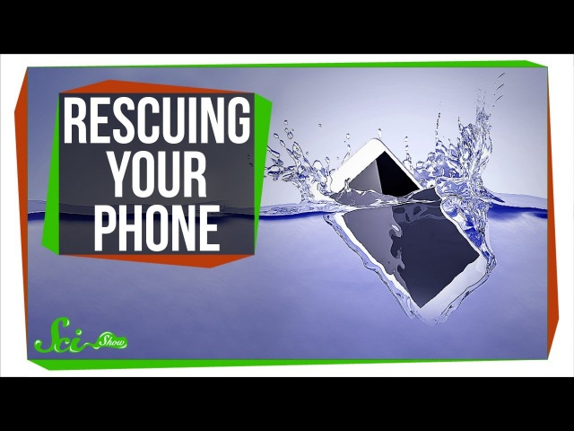 Whats the Best Way to Rescue a Drowned Phone