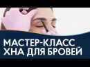Как правильно окрашивать брови хной мастер класс