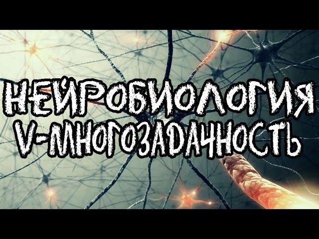 Нейробиология V - Многозадачность и нейрогенез