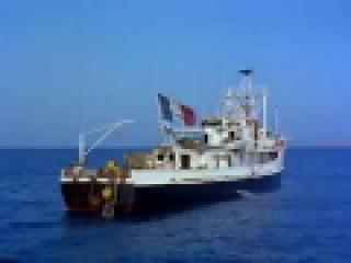 Подводная Одиссея капитана Кусто. Мир тишины.