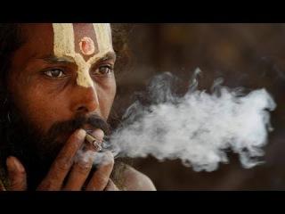 Наркотики, мантры и Шри Даттатрейя! Видение о священном дереве, пути Датты и Ашра...