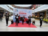 Sia - The Greatest choreography N.Rostova