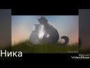 Коты Воители Синяя Звезда и Щербатая