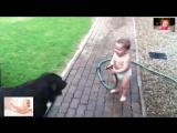 Лучшая подборка смешных видео с малышами!