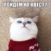 Пойдем_На_Квест!? МСК.