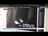 Россия 24 - Два самолета-амфибии направлены на тушение пожаров в Приморье - Россия 24
