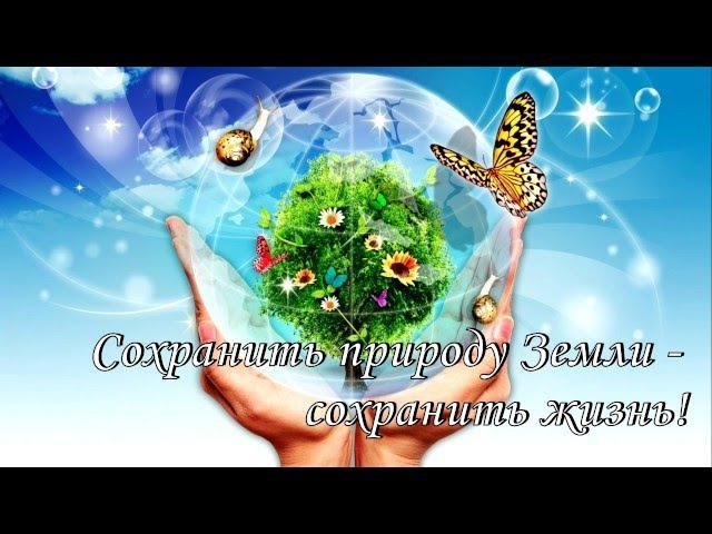 Экология Пусть бьётся всегда зелёное сердце природы! Мохова Лилия