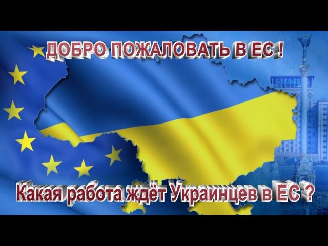 Добро пожаловать в ЕС ! Какая работа ждёт Украинцев в ЕС ?