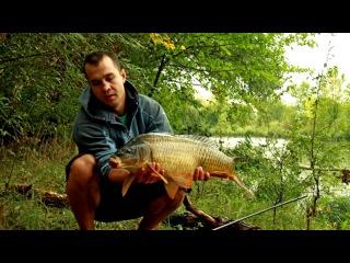 Рыбалка на карпа в корягах