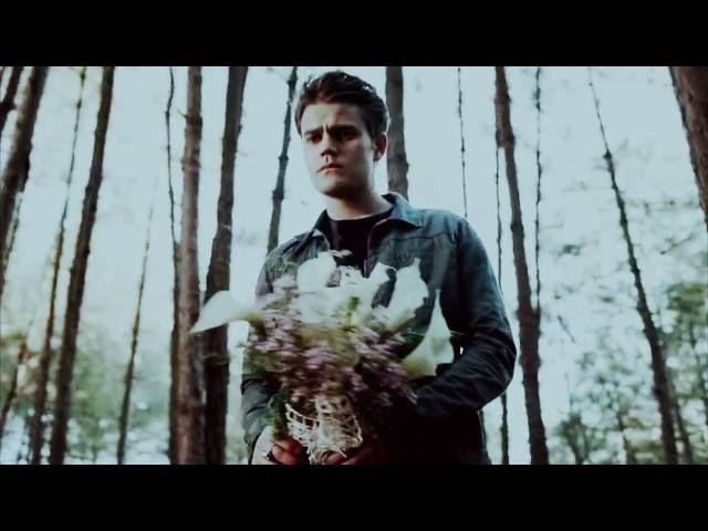 Stefan and Caroline (Elena) || Молчать о тебе