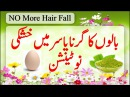 Instant Remedy Of Hair Fall Naturally | How To Cure Dandruff Fastly | Hair Fall Stop Treatment