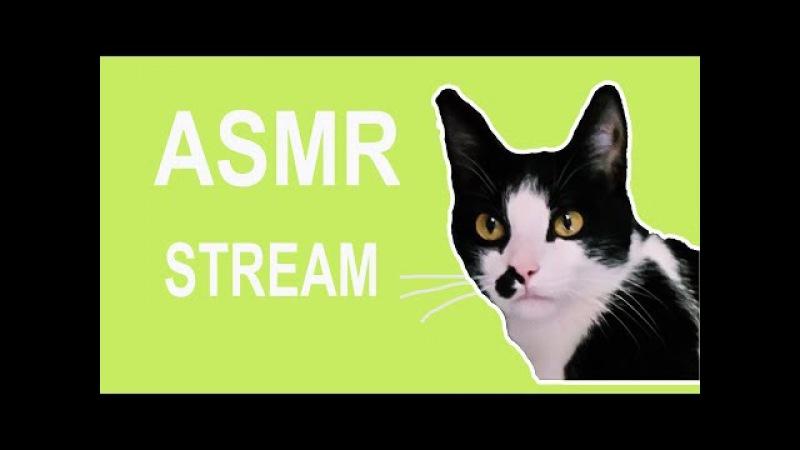 АСМР Стрим   общение шепот различные триггеры / ASMR Stream