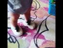 Малыш играет в вязанных тапочках