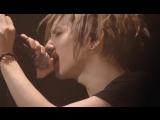 Acid Black Cherry Live 2012 Disk 2