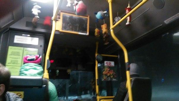 Какое-то невиданное количество повешенных измученных игрушек. Словно их теряют дети, бросают в автобусе, а злодей-водитель вешает их, как головы на пиках возле своего пристанища.