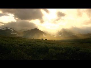 Wild Scandinavia ' Norway | Дикая природа Скандинавии ' Норвегия
