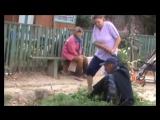 Вилли Токарев Песня Придурок ненормальный