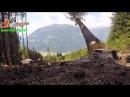 Husqvarna 562 XP®G Holzfällen Zusammenstellung