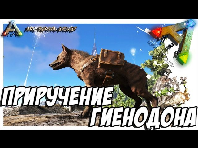 ARK Survival Evolved ПРИРУЧЕНИЕ ГИЕНОДОНА TAMING HYAENODON
