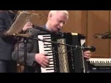 STARDUST -- Владимир Данилин (аккордеон)