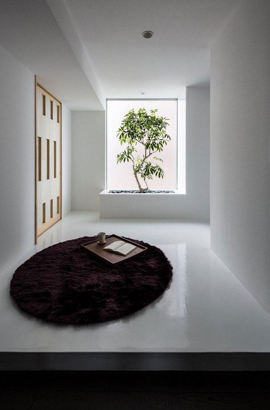 Японская студия Kouichi Kimura Architects представила проект Complex — частный дом площадью в 362 квадратных метра в префектуре Сига, Япония, в 2015 году.