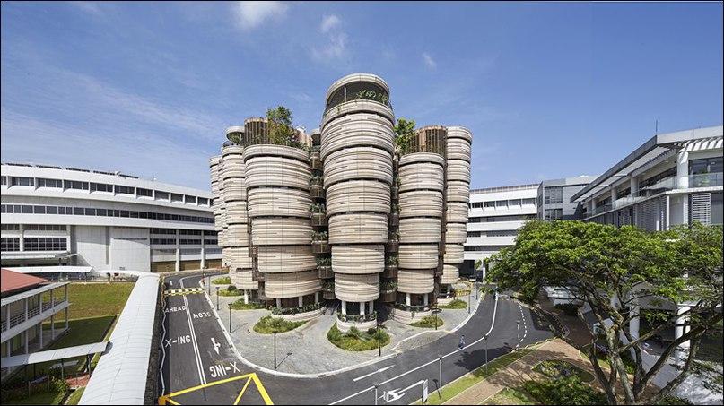Learning Hub (Обучающий Хаб) в Наньянском технологическом университете (NTU Сингапур), разработанный Heatherwick Studio в содружестве с ведущим архитектором CPG Consultants, является новой образовательной вехой в Сингапуре.