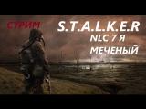 S.T.A.L.K.E.R nlc 7 я меченый стрим онлайн #6