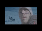 Eight Below (Белый Плен) by -$ergio-