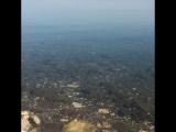 Галилейское море  пресноводное озеро на северо-востоке Израиля. Побережье озера является одним из самых низких участков суши