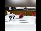 Битва роботов в Японии
