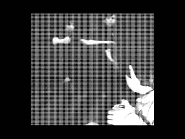 Robag Wruhme - Brumby Kapell [Musik Krause 039]