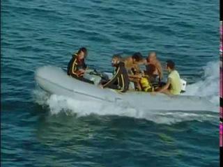 Жак-Ив Кусто - Спящие акулы Юкатана (1975) Подводная одиссея команды Кусто
