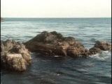 Жак-Ив Кусто - Северо восток Тихого океана   В краю живых тотемов (1988)