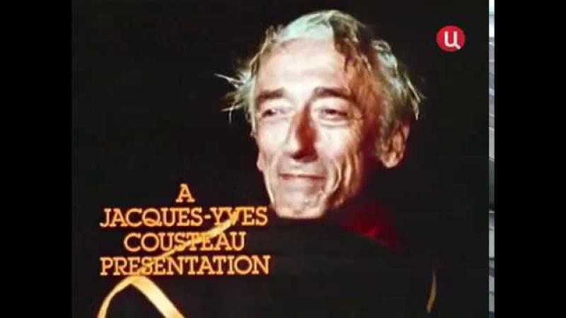 Жак-Ив Кусто - Энергетический азарт, Видение будущего (1977)