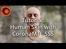 TUTORIAL: Creating realistic skin using SSS, Part 2