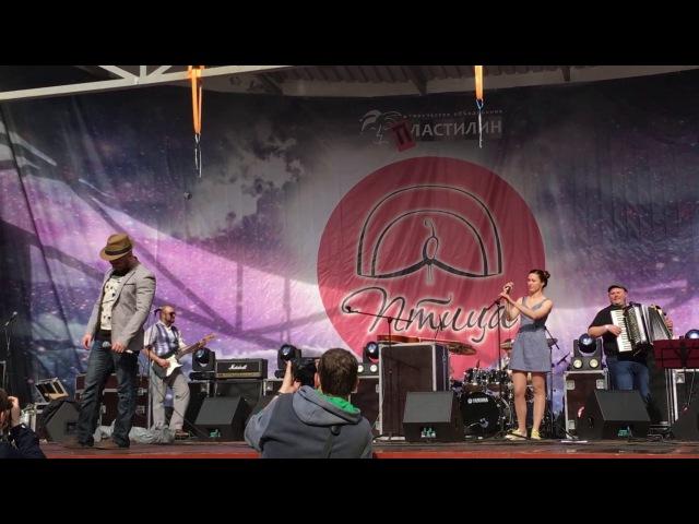 Рассол — фестиваль «Птица '17»