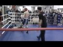 UFC-Street Vine 6 Legendary Knockout-Knockouts 18