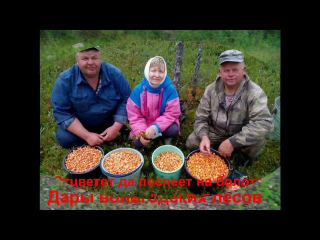 Маракова Валентина Николаевна