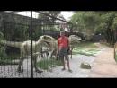 Динозавры в Кабардинке